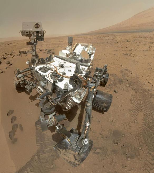 Curiosity takes the most vivid and amazing selfie