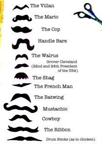 The many types of mustaches that you can grow to help raise awareness and funds for men's cancers
