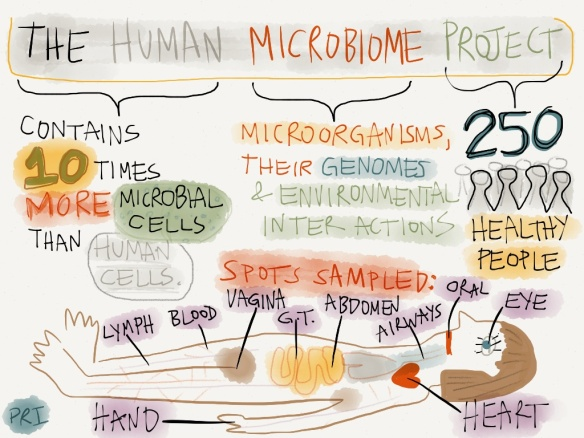 Artistic depiction of The Human Microbiome Project