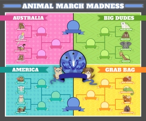 Who will be crowned the cutest animal. My money is on